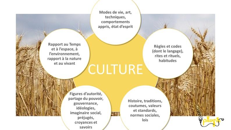 culture mind map